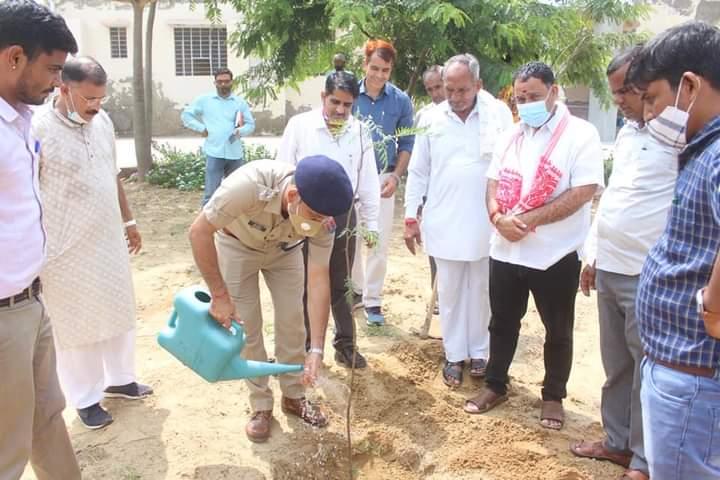 राजस्थान वन महोत्सव आगाज पर पौधारापेण किया
