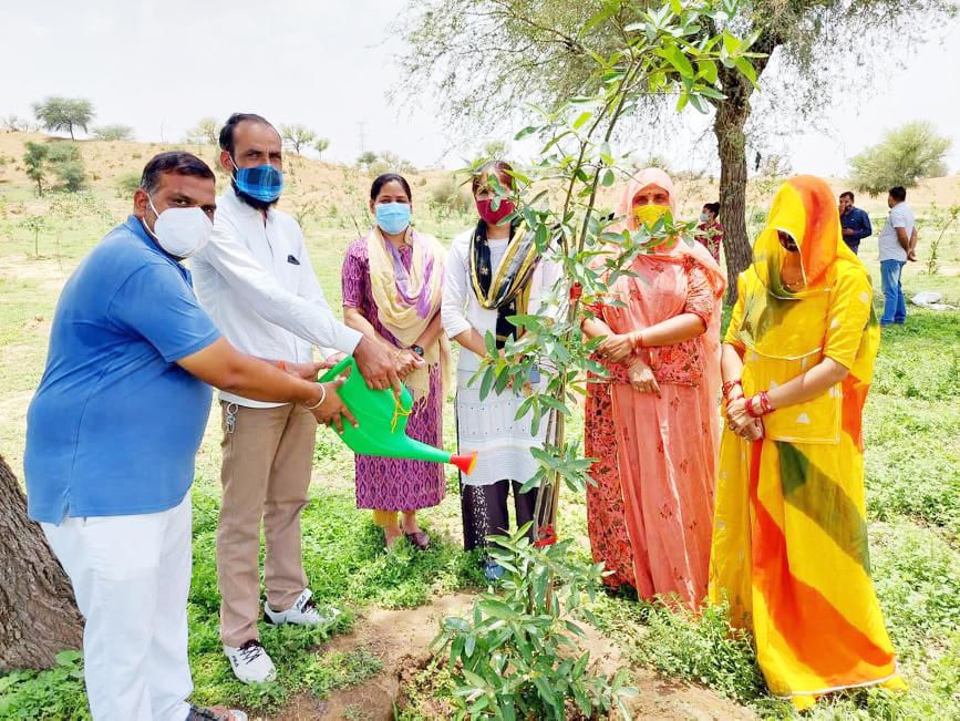 सावलोदा धायलान गांव में पर्यावरण प्रेमी सुमेर सिंह शेखावत के नेतृत्व में पर्यावरण दिवस पर 200 वृक्षारोपण किया।